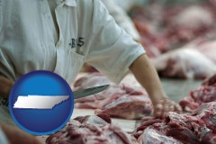 tennessee a meat processing worker